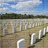 Rows of white headstones at the South Florida National Cemetery.   The cemetery will serve veterans their spouses and their children.