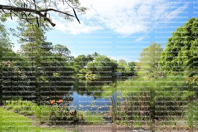Beautiful vista of Mounts Botanical Gardens in Palm Beach, Florida, USA