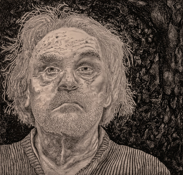 Self-portrait Age 74, Sheltering-in-palace
