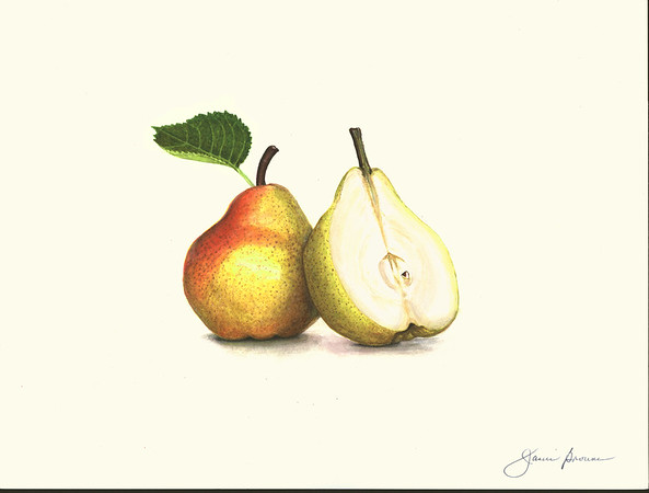 "Pears - Watercolor & Colored Pencil 9"" x 12"""
