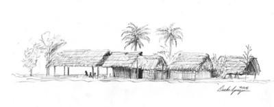 Detail of Shawi Dwellings - Village of San Antonio, Loreto Department, Peru