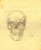 "To The Scared Fools, Test and Study of the Human Skull, circa 1987<br /> This is a reproduction of another drawing that I found in a book my High School Teacher gave me.  The book has several sketches of cadevers with pieces of flesh and groups of muscles hanging from the body. A lot of these cadavers were sketched ""standing up"" - being held up by either a meat hook or a rope going through the skull! Initially, I was disturbed, but then I found out that the sketches were from medival times.  They were done by artists and physicians looking to learn about human antonomy.  Since the church had forbid disections, many of these drawing were down in secret."