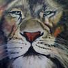 Oil Pastel Lion