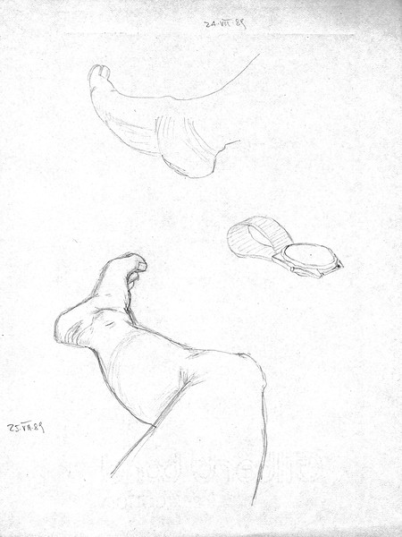 Lower limb studies