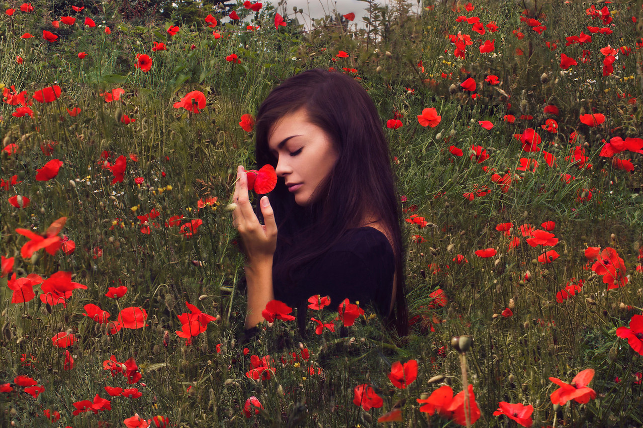 We cherish, too, the poppy red, That grows on fields where valor led. It seems to signal to the skies, That blood of heroes never dies...