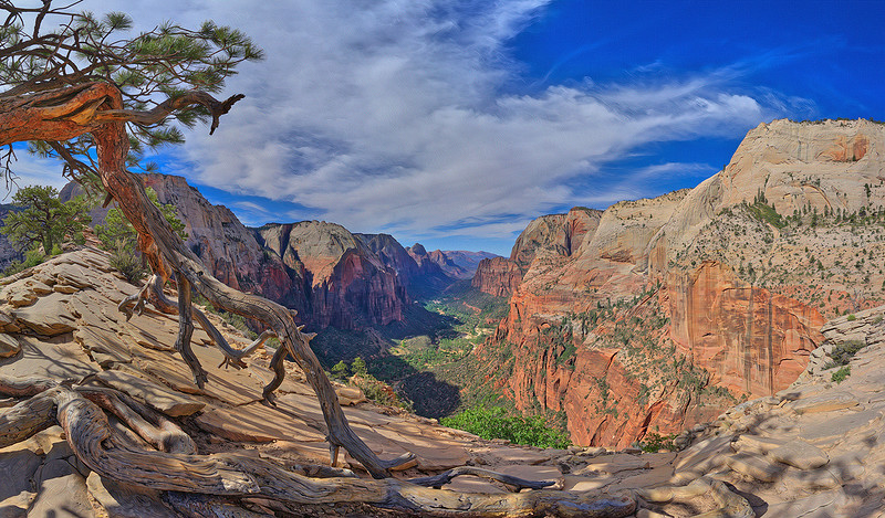 Angels Landing #7, Zion National Park, UT