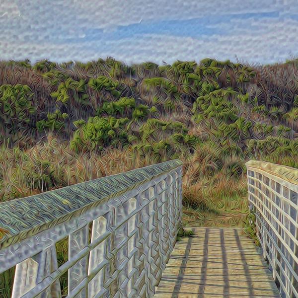 Pescadero Marsh Natural Preserve - Detail #1