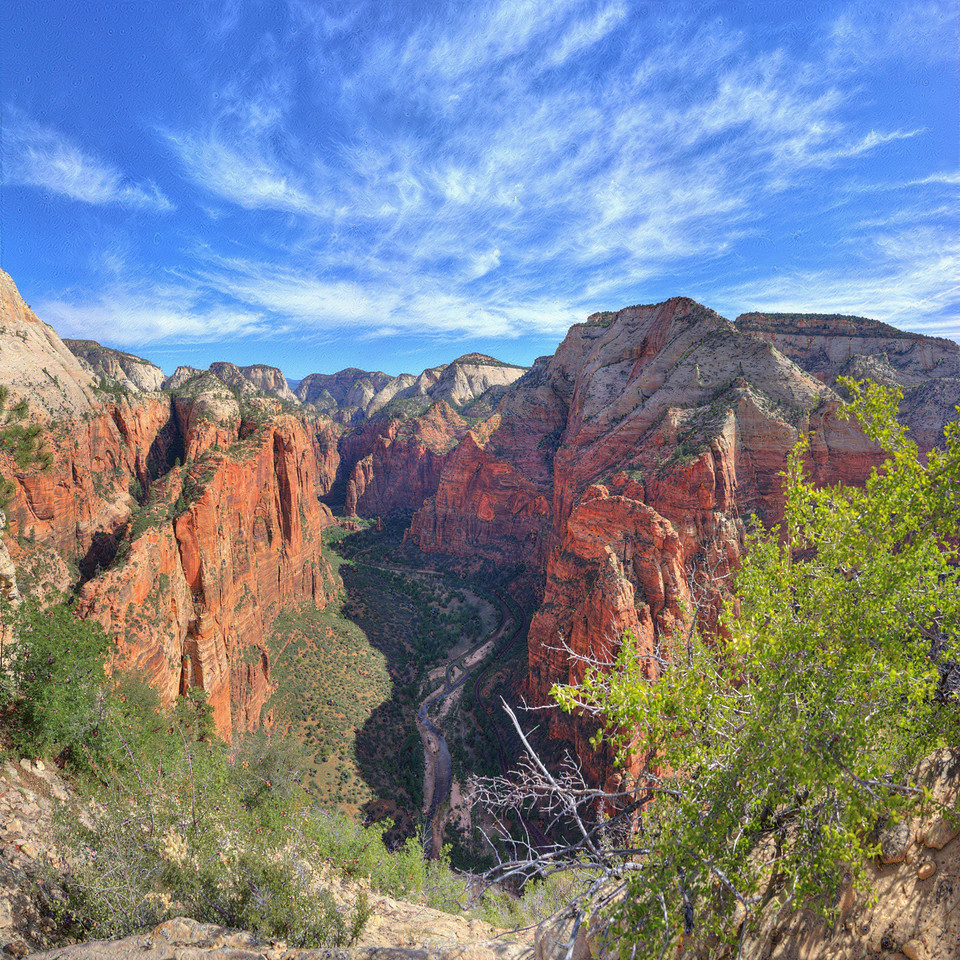 Angels Landing #8, Zion National Park, UT