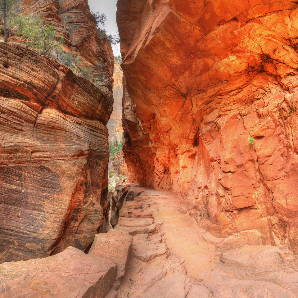 Echo Canyon, Zion National Park, UT