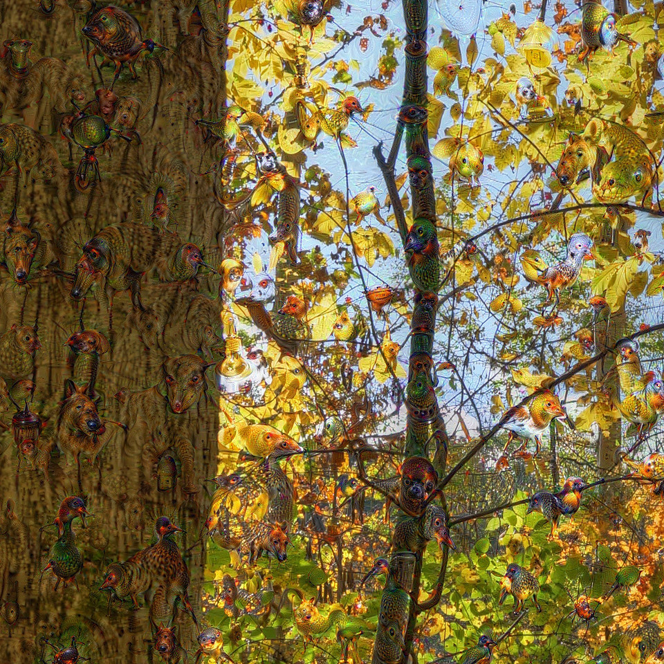 Treman State Park Woods - Detail #2