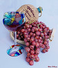 Whine Grapes 1403 w40
