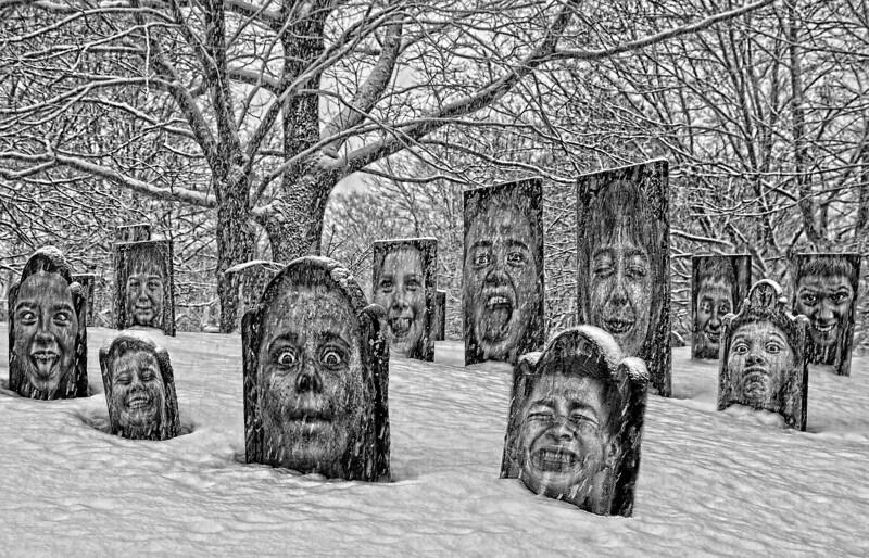 The Dead of winter 0027 w2019-2020
