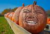 The Great Pumpkin 7046 w47