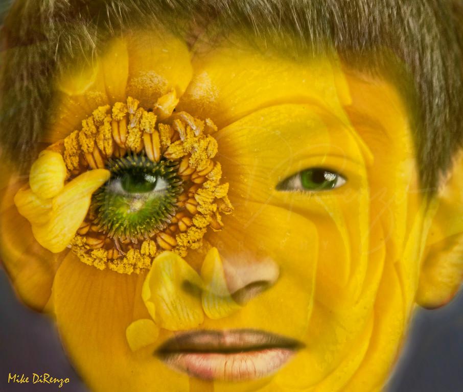 Flower Serg  3658  w23