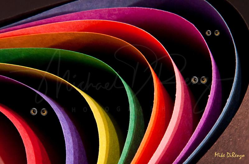 Lurking Under Rainbow     11612