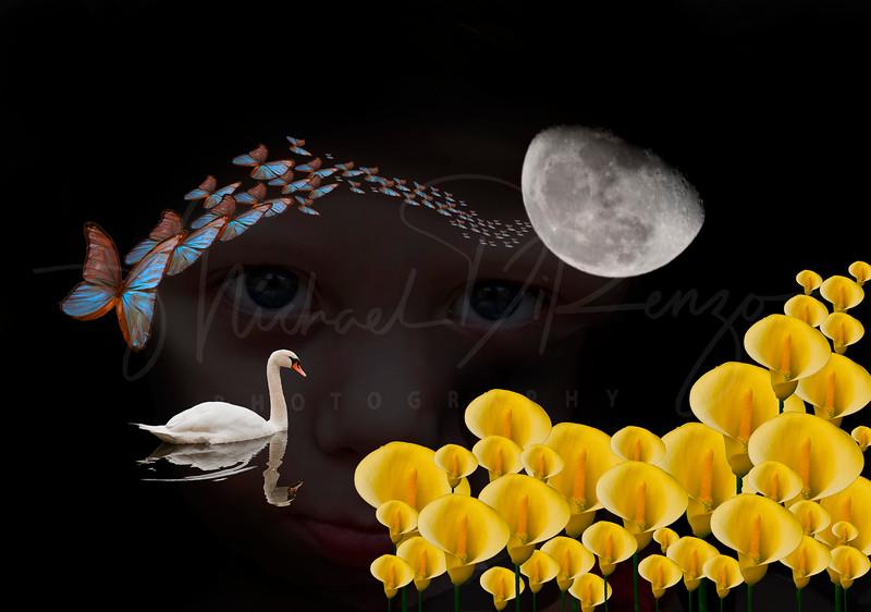A Child's Dream    8893