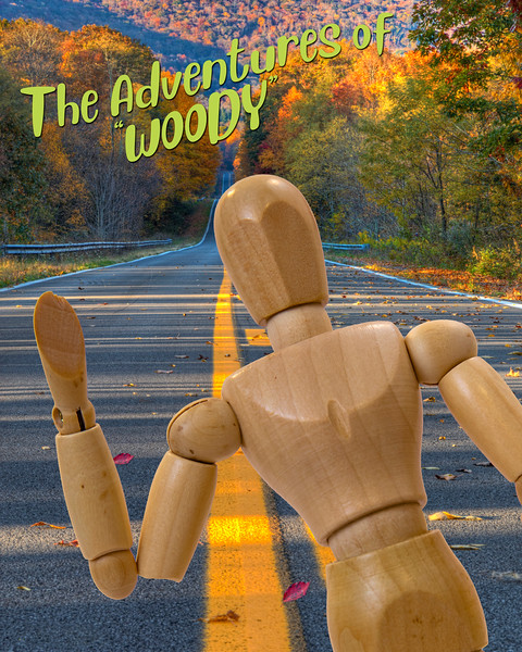 The Adventures of Woody 4982 w66