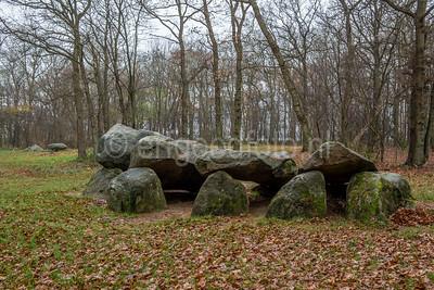 Bronneger - Hunebed D25