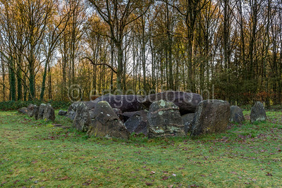 Drouwen - Hunebed D20