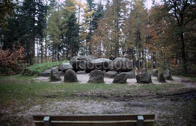 Coevorden - Hunebed D49