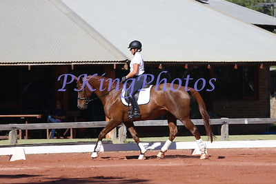 Swan River Dressage Protocol Day