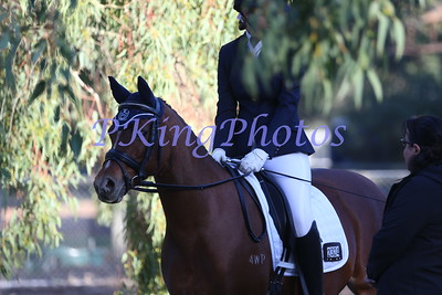Swan River Dressage Competition