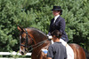Open Dressage Show 9-09 : 1 gallery with 44 photos