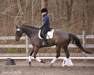 Chloe/Brook 'parade of horses'