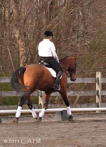 Natalie/ Kerrigold 'parade of horses'