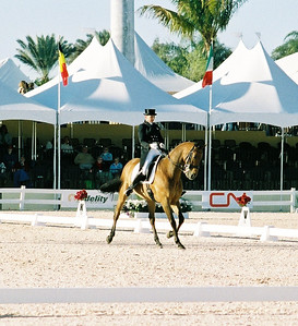 CDI 5* GP Special - T Visser MOORLAND OPPORTUNITY