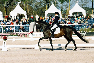 CDI 5* GP Special - M Gundersen LEONBERG