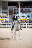 Dressage : 1 gallery with 85 photos