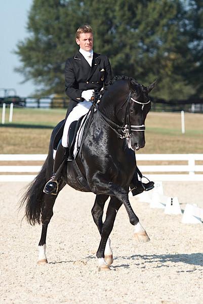 World Equestrian Games 2010- Dressage warm-up