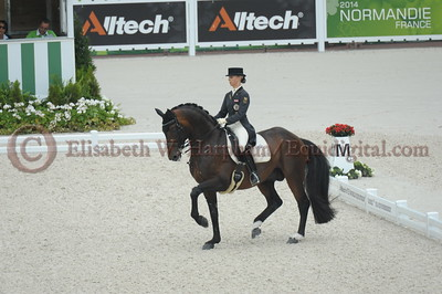 028 - 29 - Victoria Max-Theurer (AUT) - Augustin Old - 2014 World Equestrian Games