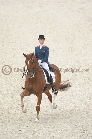 015 - 30 - Adelinde Cornelisen (NED) - Jerich Parzival N O P  - 2014 World Equestrian Games