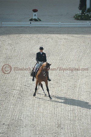 005 - 4 - Lars Petersen (DEN) - Mariett - 2014 World Equestrian Games