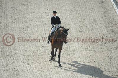 021 - 6 - Belinda Trussell (CAN) - Anton - 2014 World Equestrian Games
