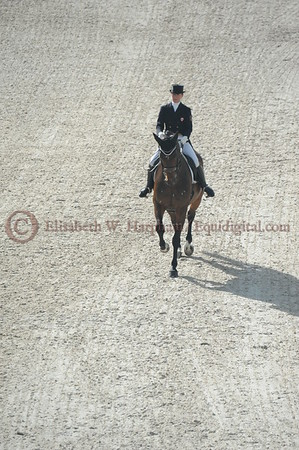 023 - 6 - Belinda Trussell (CAN) - Anton - 2014 World Equestrian Games