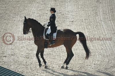 004 - 6 - Belinda Trussell (CAN) - Anton - 2014 World Equestrian Games