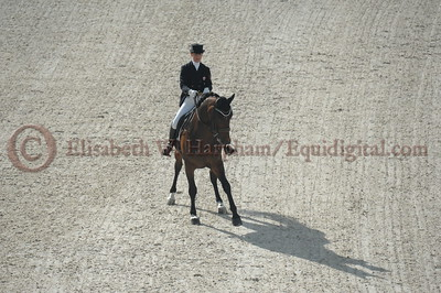 016 - 6 - Belinda Trussell (CAN) - Anton - 2014 World Equestrian Games