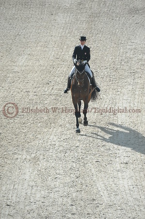 024 - 6 - Belinda Trussell (CAN) - Anton - 2014 World Equestrian Games