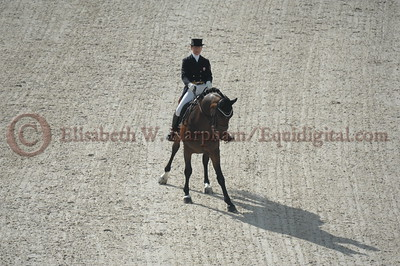 018 - 6 - Belinda Trussell (CAN) - Anton - 2014 World Equestrian Games