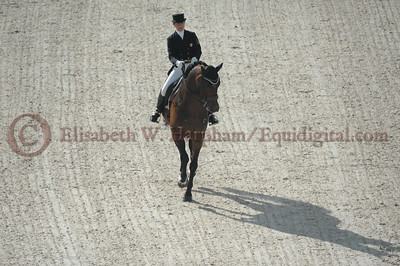 019 - 6 - Belinda Trussell (CAN) - Anton - 2014 World Equestrian Games