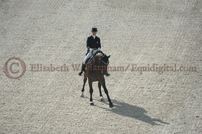 011 - 6 - Belinda Trussell (CAN) - Anton - 2014 World Equestrian Games