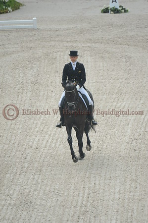 002 - 9 - Edward Gal (NED) - Glock's Voice - 2014 World Equestrian Games