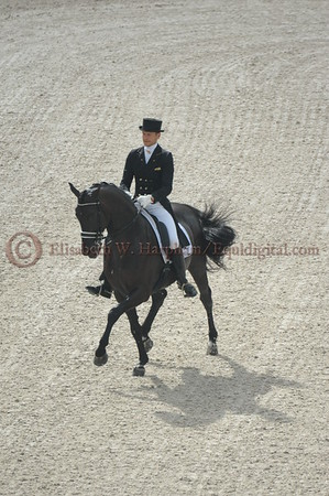 019 - 9 - Edward Gal (NED) - Glock's Voice - 2014 World Equestrian Games