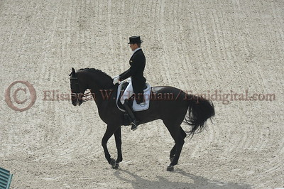 027 - 9 - Edward Gal (NED) - Glock's Voice - 2014 World Equestrian Games