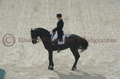 026 - 9 - Edward Gal (NED) - Glock's Voice - 2014 World Equestrian Games