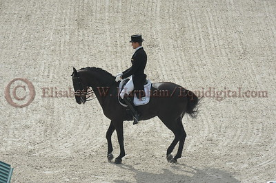 025 - 9 - Edward Gal (NED) - Glock's Voice - 2014 World Equestrian Games