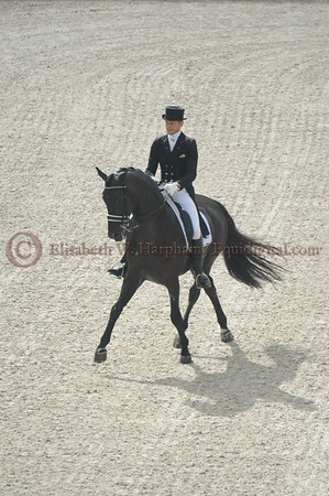 017 - 9 - Edward Gal (NED) - Glock's Voice - 2014 World Equestrian Games